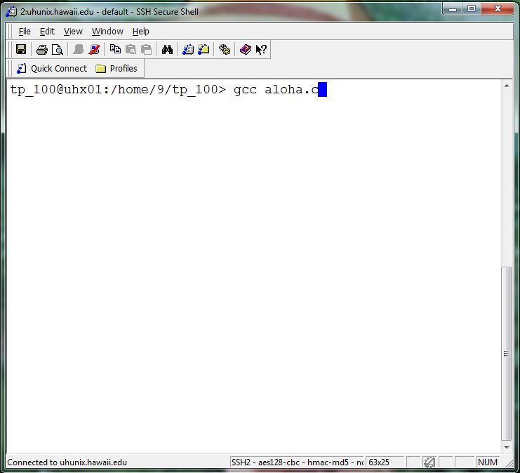 Compile Run C Programs Terminal Sportfilecloud